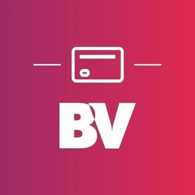 Divulgação: BV Financeira