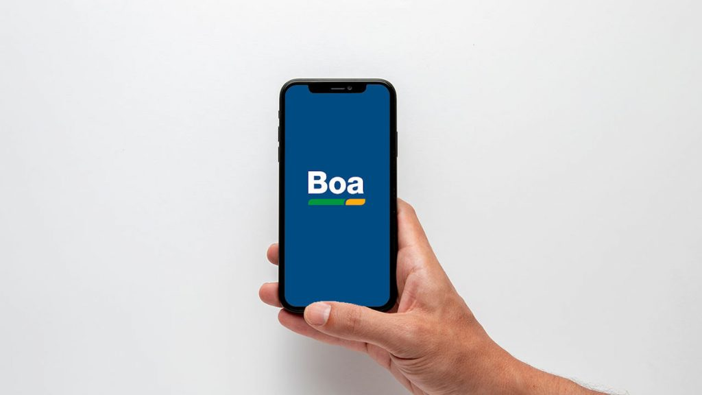 consultar cpf app Boa Vista